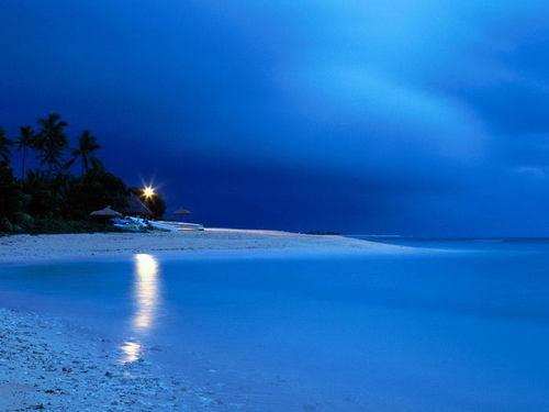 Playa tropical en la noche