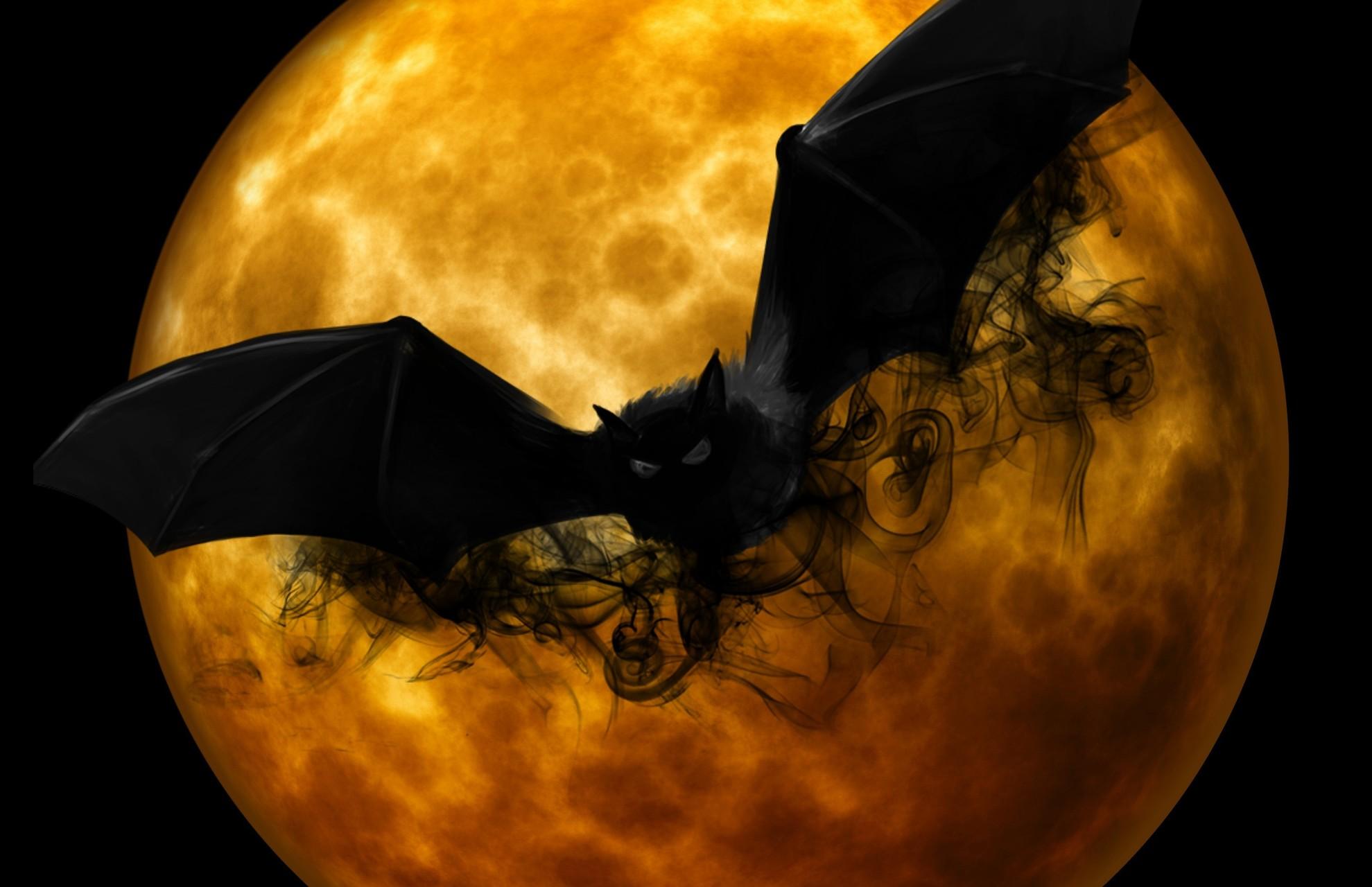Los mejores wallpapers para descargar - Murcielago halloween ...