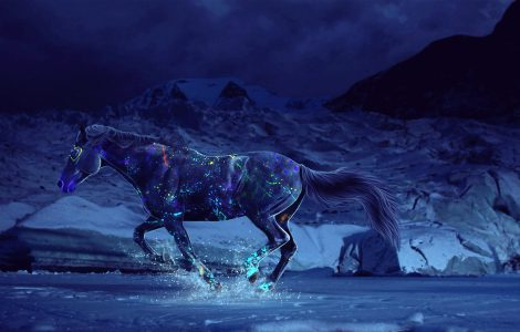 Wallpaper Caballo en 3D