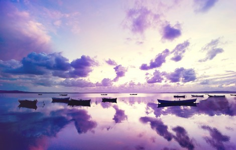 Purple Beach Sunset Wallpaper iphone Wallpaper