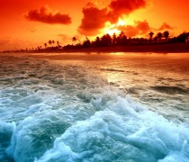 Playa Tropical Sunset Wallpaper
